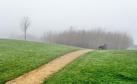 Картинки природа, пейзаж, скамейка, трава