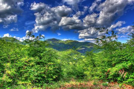 Картинки горы, небо, облака, лес