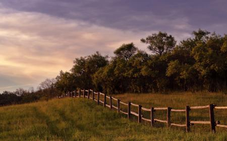 Фотографии пейзажи, заборы, деревья, фото