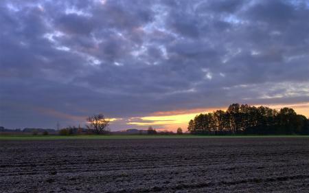 Обои пейзажи, германия, поле, поля