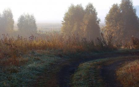 Картинки пейзажи, обои, природа, фото