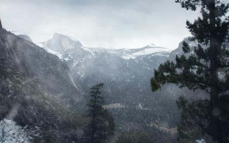 Фотографии Winter, снег, горы, лес