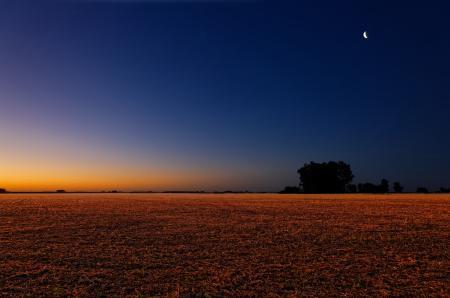 Картинки поле, небо, вечер, закат