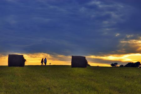Фото поле, прогулка, роллы, закат