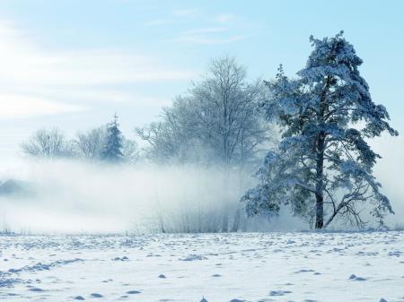 Фотографии зима, снег, пейзаж, природа