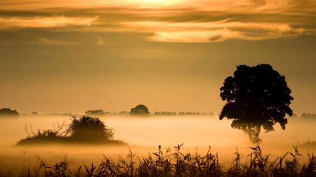 Фотографии закат, поле, туман, пейзаж