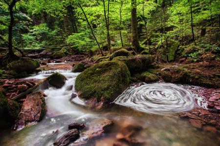 Обои Monbach Creek, Baden-Württemberg, Germany, река Монбах
