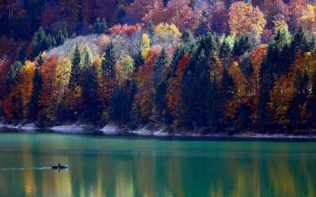 Фотографии горы, склон, лес, осень