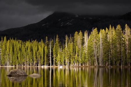 Заставки пейзажи, фото, вода, деревья