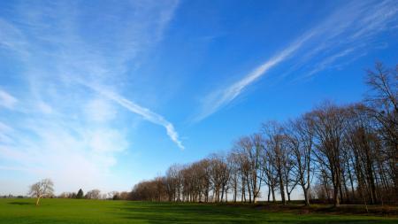 Фото природа, пейзаж, поле, трава