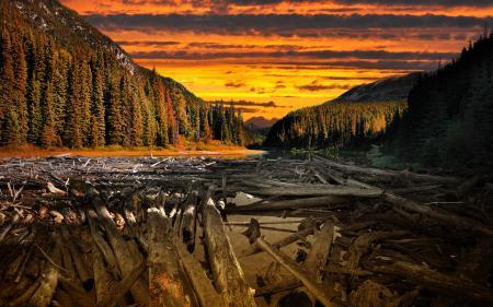 Фото Neverland, by IvanAndreevich, горы, дерево