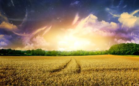 Фотографии горизонт, утро, рассвет, природа