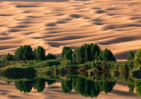 Обои Ливия, пустыня, песок, дюны