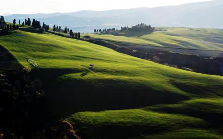 Заставки поле, лето, тени, природа