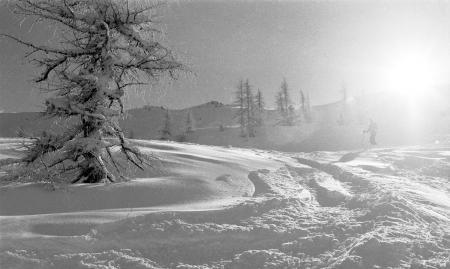 Фотографии природа, пейзаж, зима, снег