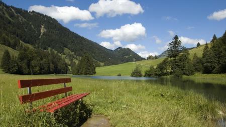 Фото день, солнце, трава, лавка