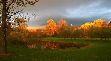 Картинки осень, пасмурно, озеро, трава