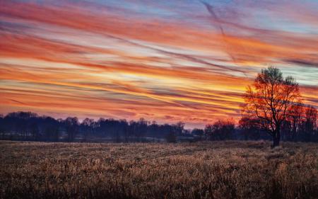 Картинки осень, закат, ноябрь, 22.11.2010