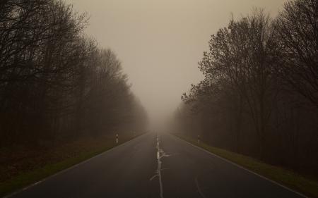Заставки пейзажи, фото, дорога, лес