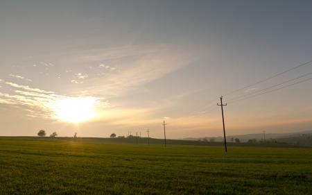 Фото пейзажи, поле, трава, фото