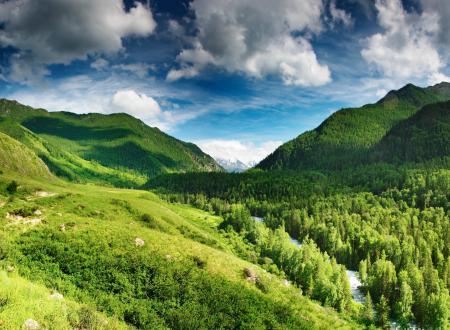 Фотографии Green highlands, лес, горы, река