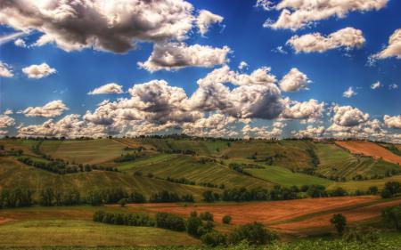 Заставки природа, поля, деревья, небо