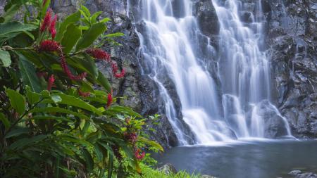 Картинки Водопад, вода, природа, пейзаж