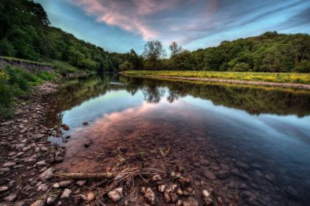 Обои река, берег, лес, деревья