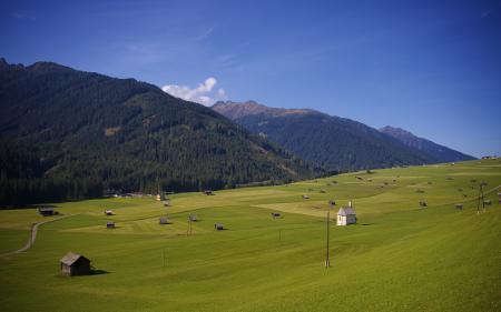 Фотографии луг, горы, деревья, пейзаж
