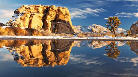 Обои Joshua tree national park, америка, пейзаж, природа