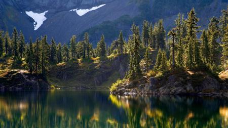 Картинки природа, озеро, отражение, деревья