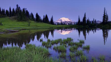 Заставки Природа, пейзаж, озеро, трава