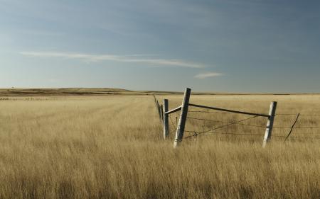 Фото поле, небо, забор, природа