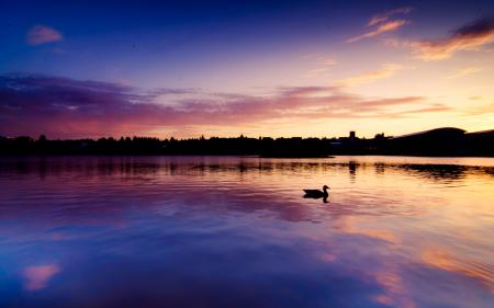 Заставки вечер, закат, город, озеро
