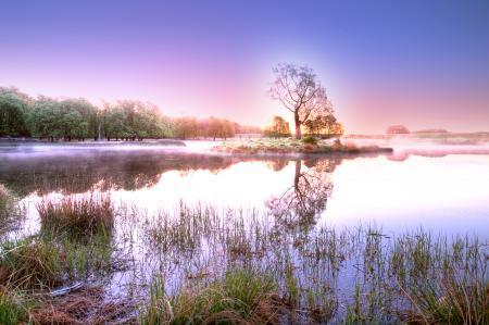 Фотографии пейзаж, природа, расвет, солнце