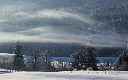 Заставки зима, поле, лес, туман