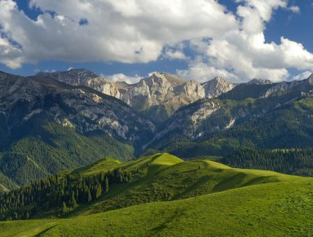 Картинки Китай, горы, деревья, трава