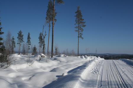 Заставки зима, снег, мороз, блеск