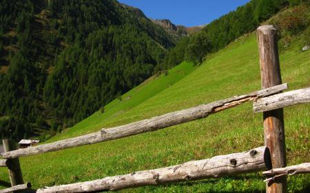 Обои горы, холмы, забор, деревья
