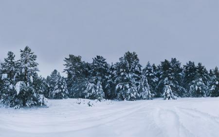 Фотографии зимние пейзажи, природа, зима, фото