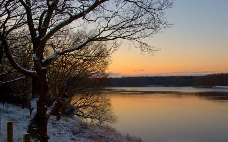 Обои река, лес, берег, закат