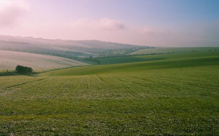 Обои пейзажи, фото, трава, природа