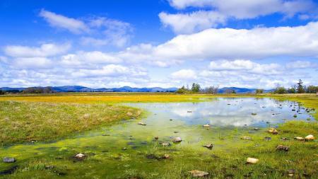 Фотографии природа, горы, лес, горизонт
