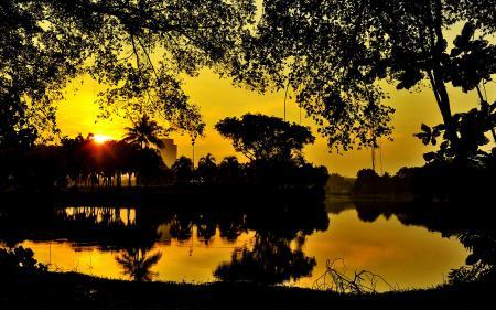 Фото сад, закат, водоем