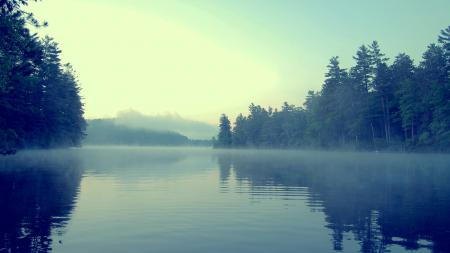 Фото туман, вода, лес, берег