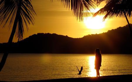 Обои пляж, берег, девочка, остров