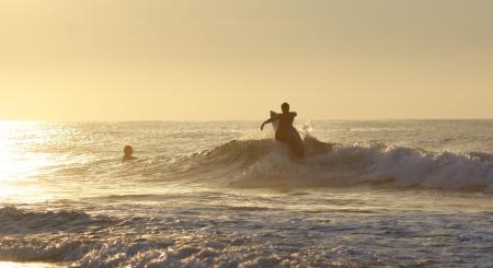 Обои серфинг, море, доска, купание