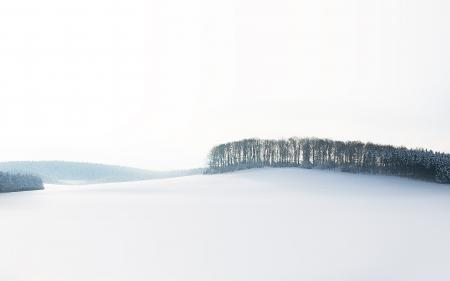 Заставки зима, снег, деревья