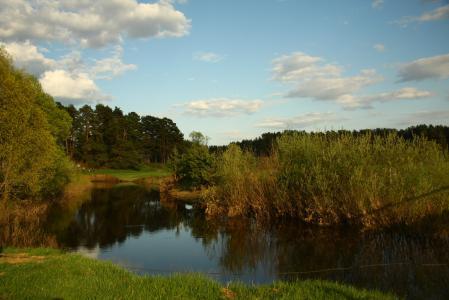 Фотографии пейзаж, природа, река, лес