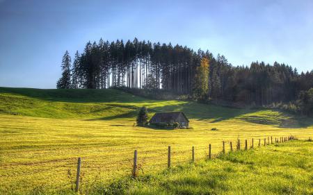 Фотографии поле, лето, дом, забор